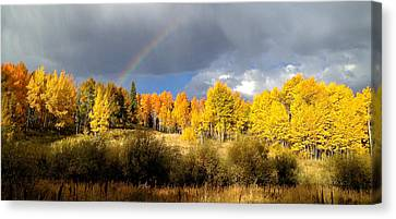 Autumn Rainbow Canvas Print by Bob Berwyn