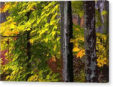 Canvas Print featuring the photograph Autumn  by Randy Pollard