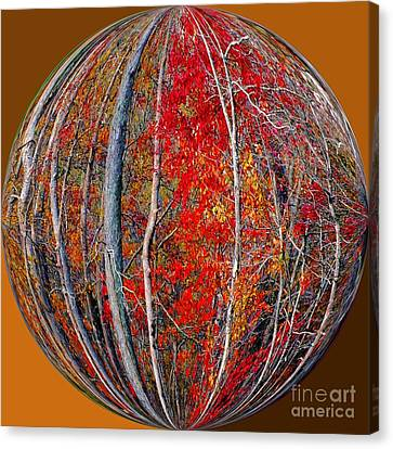 Autumn Reds Canvas Print by Scott Cameron