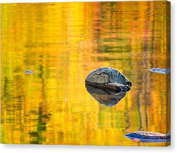 Autumn Reflected Canvas Print by Joan Herwig