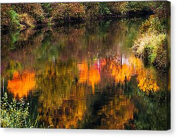 Autumn Reflection Canvas Print by Crystal Hoeveler