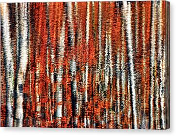 Autumn Reflection Canvas Print by Marcia Colelli