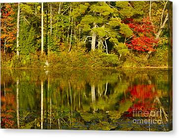 Canvas Print featuring the photograph Autumn Reflections by Alice Mainville