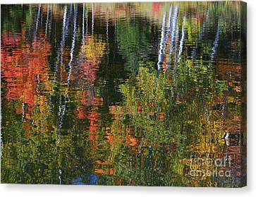Autumn Reflections Canvas Print by Dan Hefle