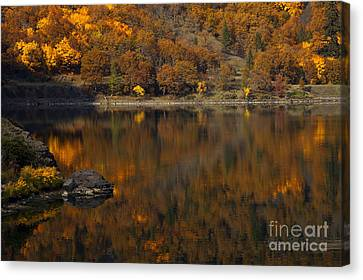 Autumn Reflections Canvas Print by Mike  Dawson