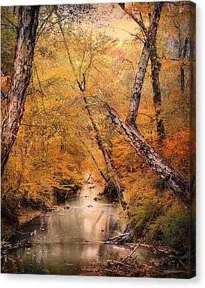 Autumn Riches 1 Canvas Print by Jai Johnson