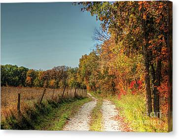 Autumn Ridge Canvas Print by Thomas Danilovich