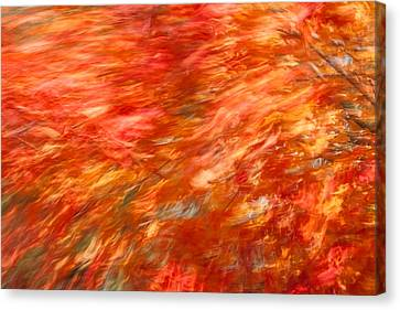 Canvas Print featuring the photograph Autumn River Of Flame by Jeff Folger