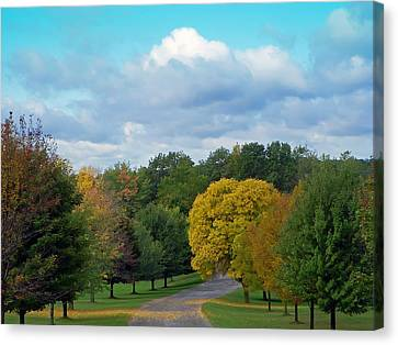 Canvas Print featuring the photograph Autumn Road by Aimee L Maher Photography and Art Visit ALMGallerydotcom