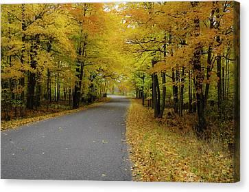 Autumn Road Canvas Print by Hans Castleberg