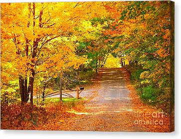 Canvas Print featuring the photograph Autumn Road Home by Terri Gostola