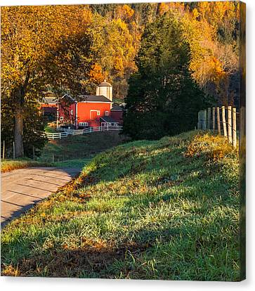 Autumn Road Morning Square Canvas Print by Bill Wakeley