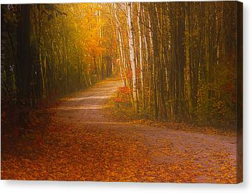 Autumn Roadway Canvas Print by Jim Vance