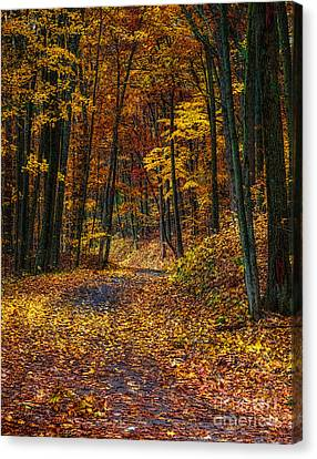 Autumn Roadway Reclamation Canvas Print by Trey Foerster