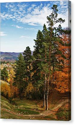Autumn Scene IIi Canvas Print by Bogdan M Nicolae
