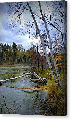 Autumn Scene Of Along The Shore Of The Platte River In Michigan Canvas Print by Randall Nyhof