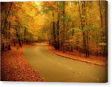 Autumn Serenity - Holmdel Park  Canvas Print
