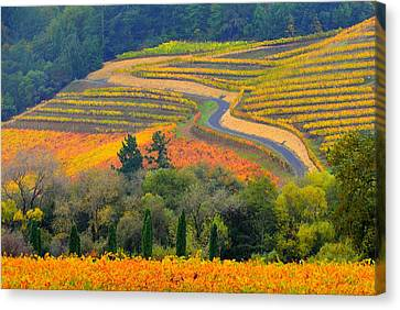 Autumn Showing Off Canvas Print by Antonia Citrino
