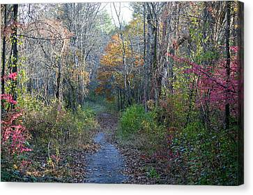 Autumn Silence No.2 Canvas Print by Neal Eslinger