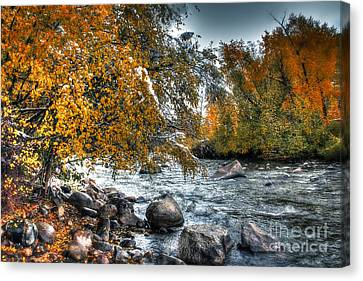 Autumn Snow Canvas Print by Bob Hislop