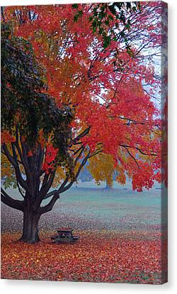 Autumn Splendor Canvas Print by Lisa Phillips