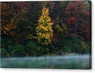 Red Leaf Canvas Print - Autumn Splendor by Shane Holsclaw
