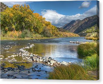 Autumn Stance Canvas Print by Britt Runyon