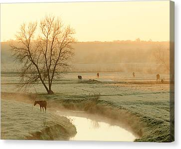 Autumn Steam Canvas Print by Todd Klassy