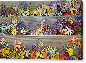 Autumn Steps Canvas Print by William Schmid