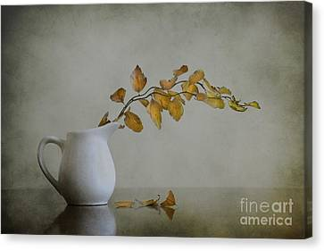 Autumn Still Life Canvas Print by Diana Kraleva