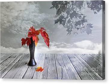Autumn Still Life Canvas Print by Veikko Suikkanen