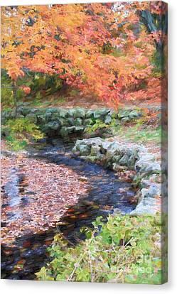 Autumn Stream Canvas Print by Jayne Carney