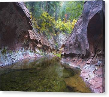 Autumn Subway Canvas Print by Peter Coskun