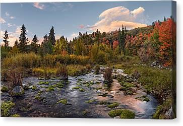 Beautiful Creek Canvas Print - Autumn Sunset by Leland D Howard