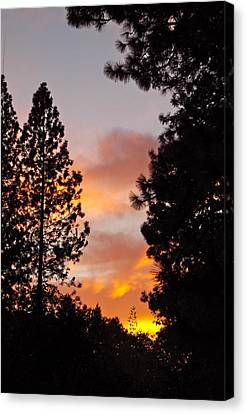Autumn Sunset Canvas Print by Michele Myers