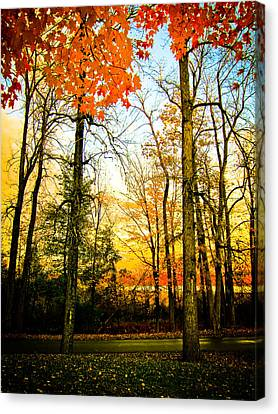 Autumn Sunset  Canvas Print by Sara Frank