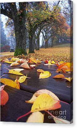 Canvas Print featuring the photograph Autumn Table by Maria Janicki