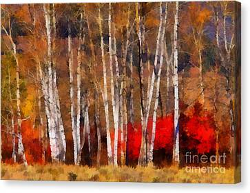 Canvas Print featuring the photograph Autumn Tapestry by Clare VanderVeen
