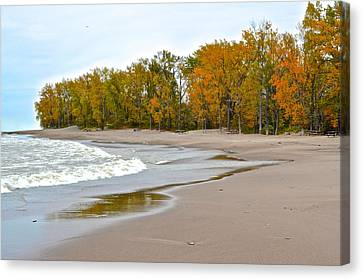Autumn Tides Canvas Print by Frozen in Time Fine Art Photography