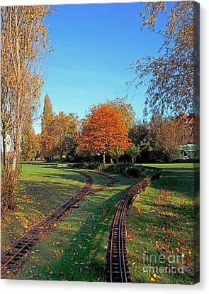Autumn Tracks Canvas Print by Terri Waters
