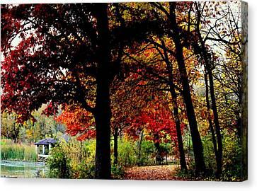 Autumn Trail Canvas Print by Rosanne Jordan