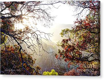 Autumn Trees Canvas Print by Kevin Ashley