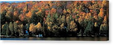 Autumn Trees Laurentide Quebec Canada Canvas Print by Panoramic Images