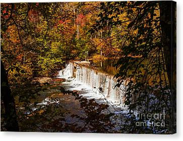 Autumn Leaf On Water Canvas Print - Autumn Trees On Duck River by Jerry Cowart