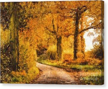 Autumn Trees Canvas Print by Pixel Chimp