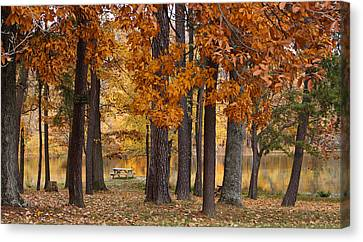 Autumn View Canvas Print by Sandy Keeton