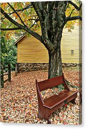 Autumn Wait Canvas Print by Geri Glavis