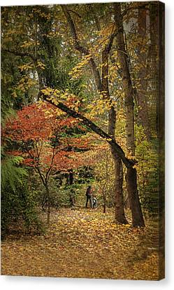 Autumn Walk Canvas Print by Diane Schuster