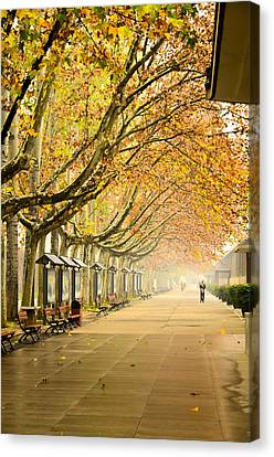 Autumn Walk Xian China Canvas Print by Sally Ross