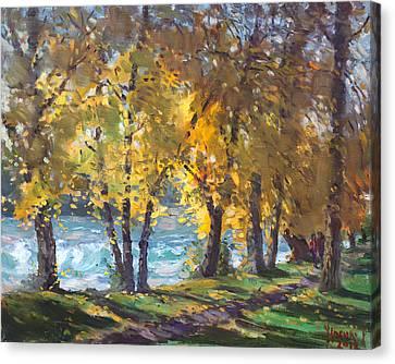 Autumn Walk Canvas Print by Ylli Haruni